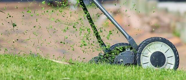 Rasenmäher Schnittgut